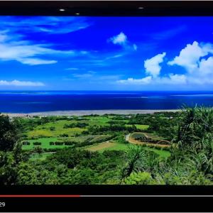 Sunvell T95U Pro - Android TV Box giải mã 4K mượt mà