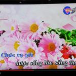 Kiwibox S8 Pro - Karaoke online